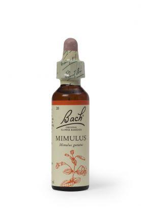 Bach Mimulus