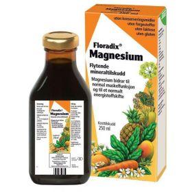 Floradix Magnesium