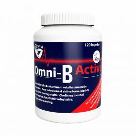 Biosym Omni B Active